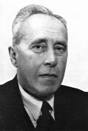 Historia: Johan Huizinga (domena publiczna)
