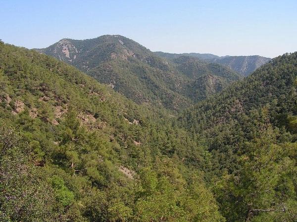 Góry Trodos na Cyprze, fot. Paul167, na licencji [CC BY-SA 2.5](https://creativecommons.org/licenses/by-sa/2.5/deed.pl)