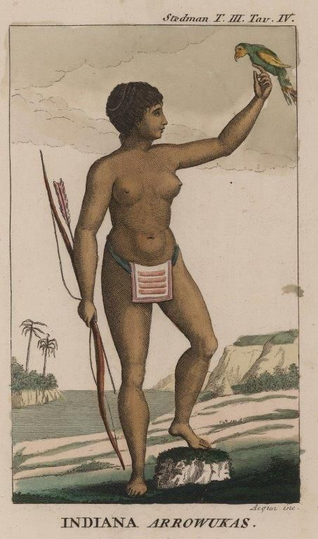 Kobieta arawacka na ilustracji z XVIII wieku