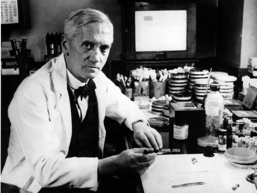 Alexander Flemming, któremu przypisuje się odkrycie penicyliny (domena publiczna)