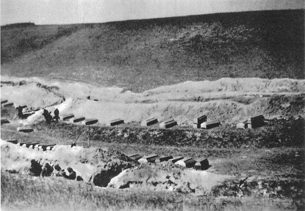 """Ekshumacja pomordowanych w w fordońskiej """"Dolinie Śmierci, rok 1947 (domena publiczna)"""
