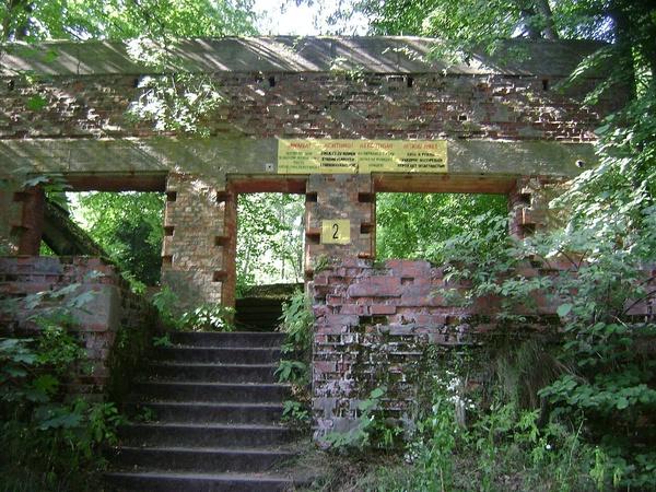 Wilczy Szaniec: ruiny centrum dowodzenia RSD (domena publiczna)